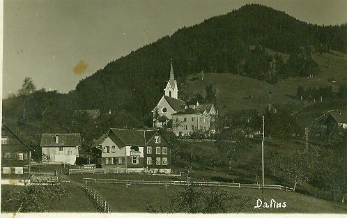 dafins1.jpg