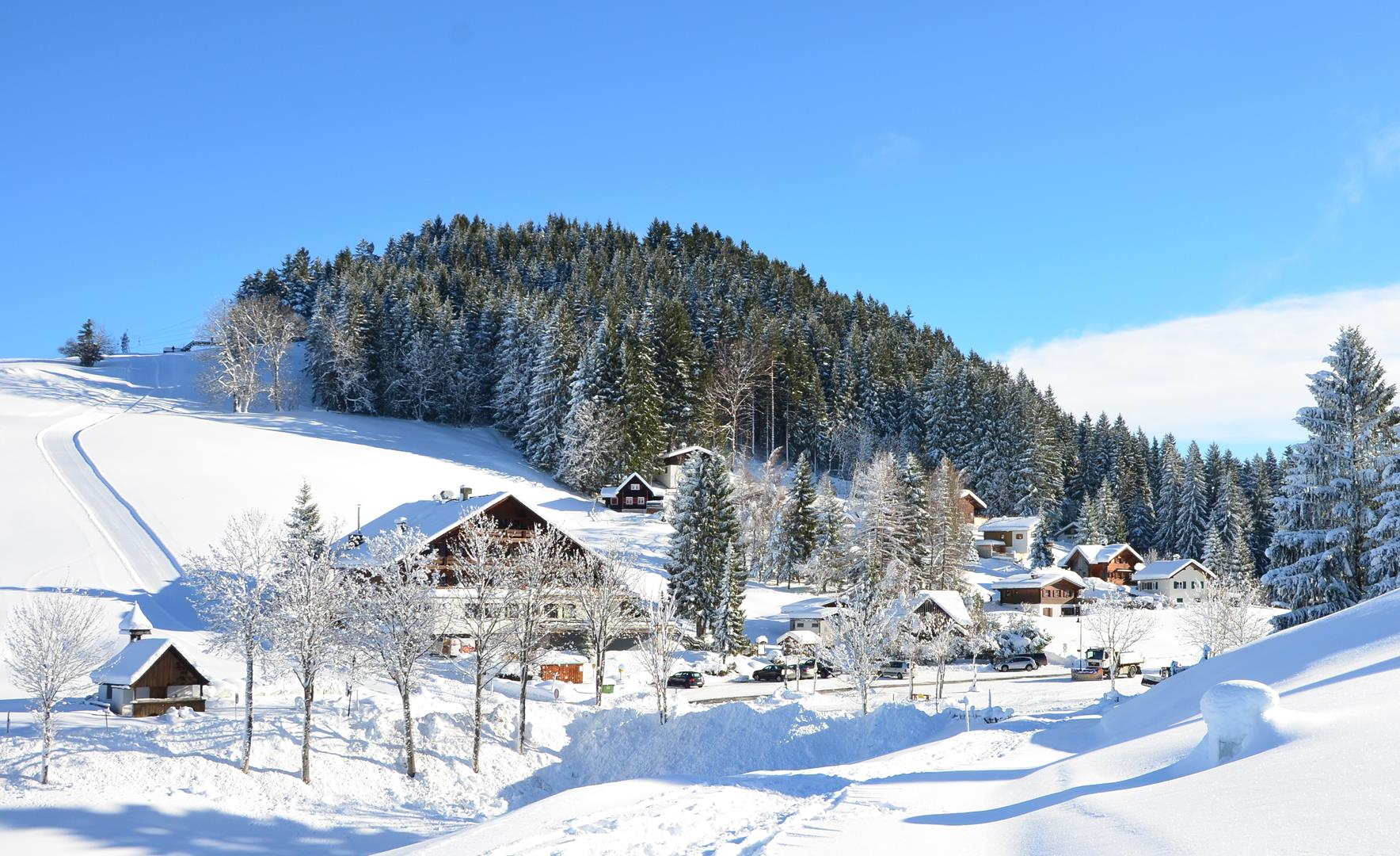 Winter 151217.19 (Copy).JPG
