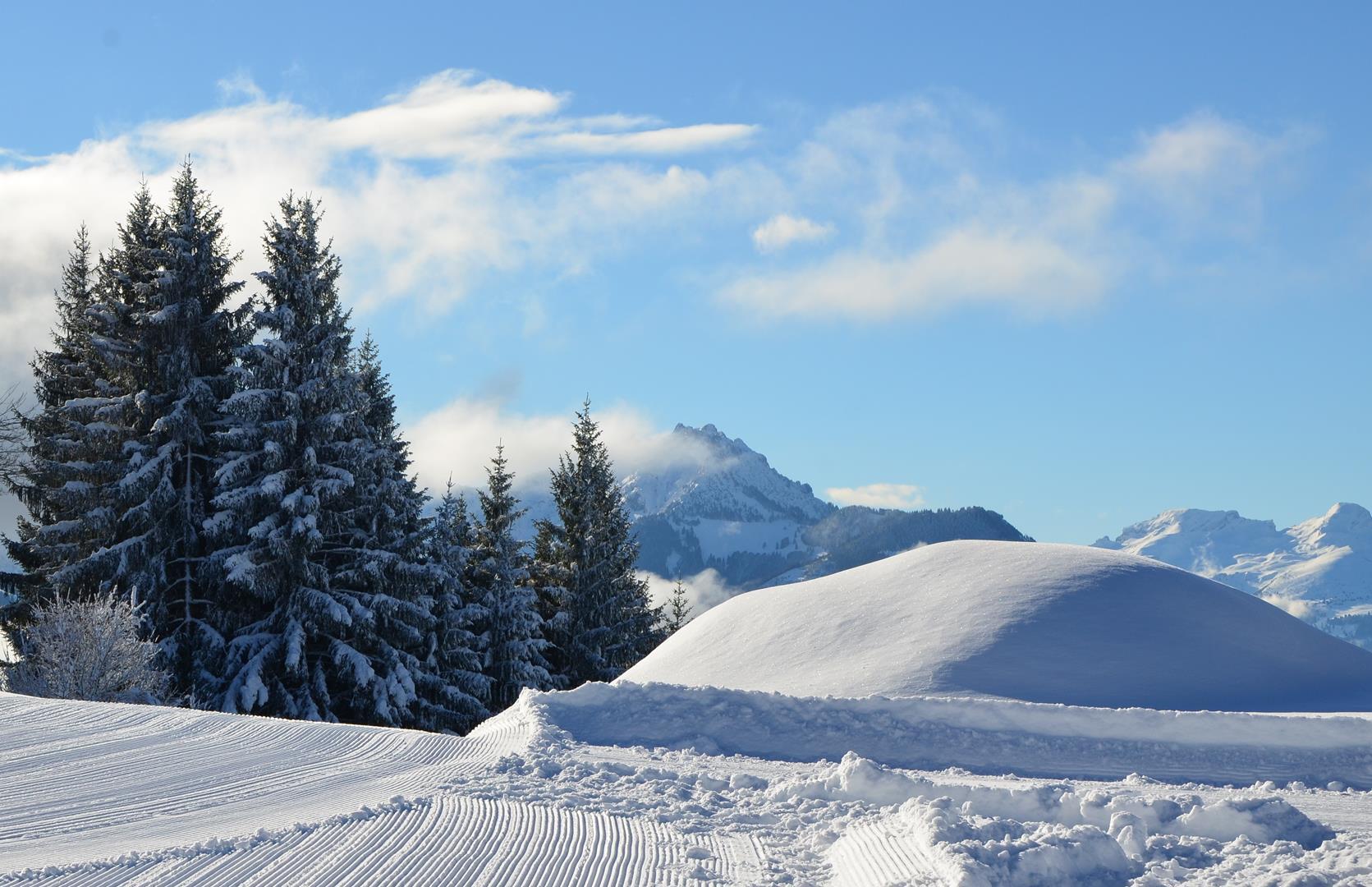 Winter 151217.44 (Copy).JPG
